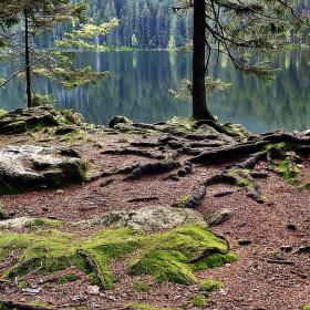Při břehu jezera