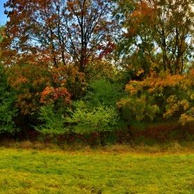 Namalovaný podzim