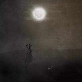 Za měsíčního světla