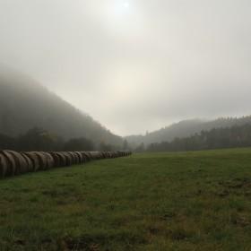 dopolední mlha