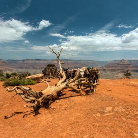 Cedar Ridge, Grand Canyon