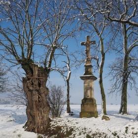 křížek u staré vrby