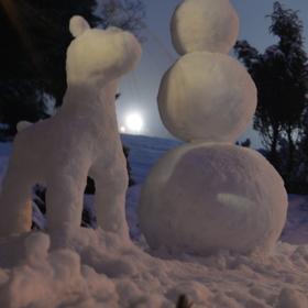 Pes a sněhulák