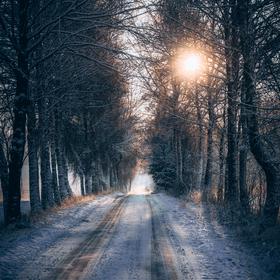 vzpomínka zimu