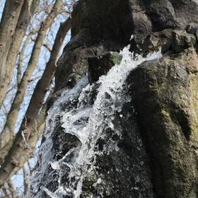 Vodopád v pražské zoo