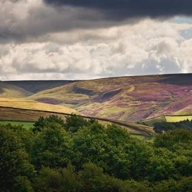 Derbyshire Landscape