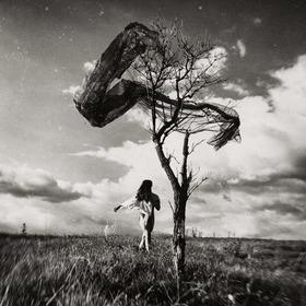 I am the tree