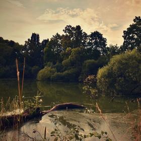Večer u rybníka