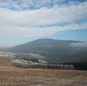 Mrazík u Velkého boru