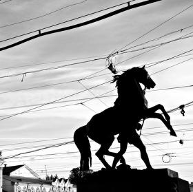 Socha - kůň
