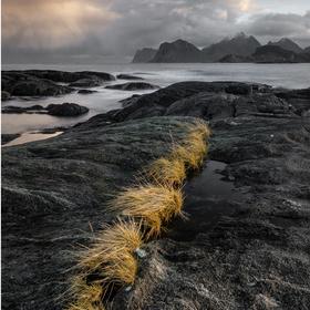 Napp_Lofoty_Norsko
