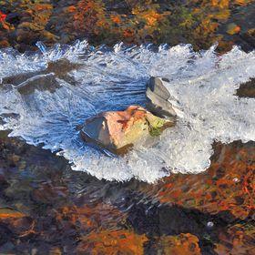 Ledový suvenýr