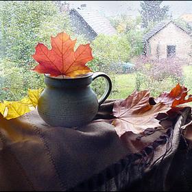 Déšť si s oknem na pláč hraje