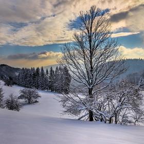 Zmrznutá krajinka