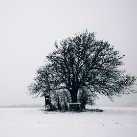 Zimní minimalismus