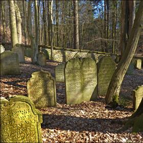 Lesní hřbitov u Podbřezí I