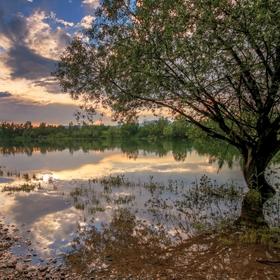 Zatopený rybník  II