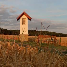 V polích u Florianka II
