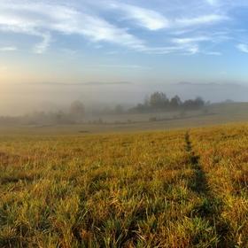 Mlhavé ráno