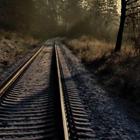 Ráno na kolejích