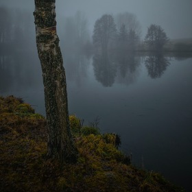 Mlhavá země