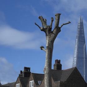 Londýnský střep