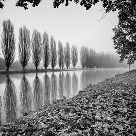 Brandýs nad Labem v mlžném ránu