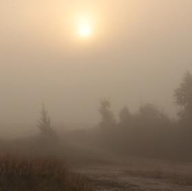 krajina v mlze