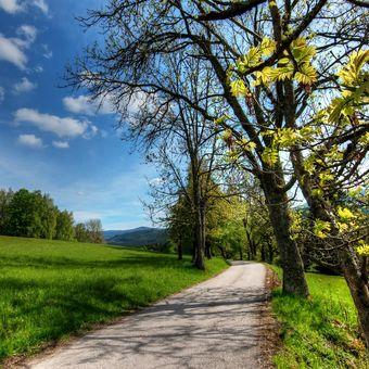 Cestou z Jeleních vrchů