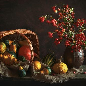 Podzimní variace