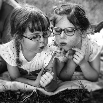 sestry