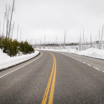 Yellowstone NP. Wyoming, USA