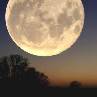 Měsíční experiment