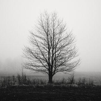 Vzpomínka na podzim...
