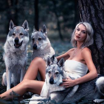 Mezi vlky