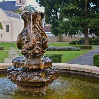 Květinová fontána