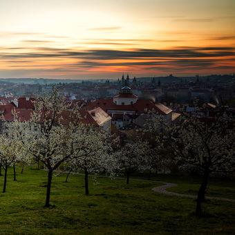 Probouzející se Praha
