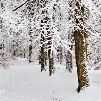 ...když je zima kouzelná....