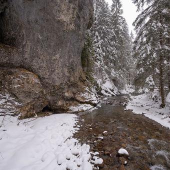 Dračí potok