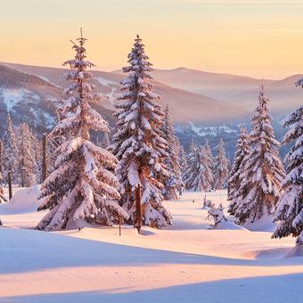 Zimní okouzlení