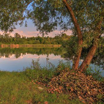 Ticho na rybníku