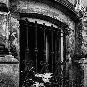 Sklepní okno