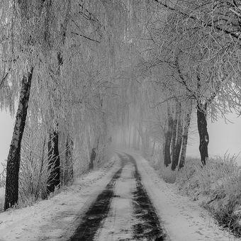 Zima v Železných horách