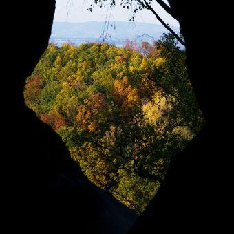 Okno do podzimu.