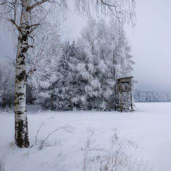 Dech paní zimy....