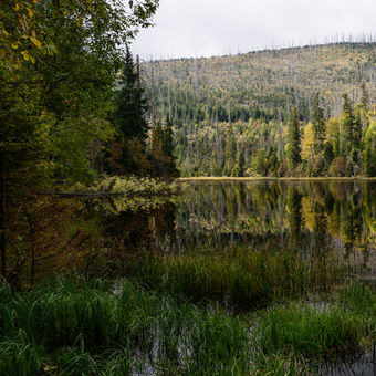 Cesta za barvami podzimu
