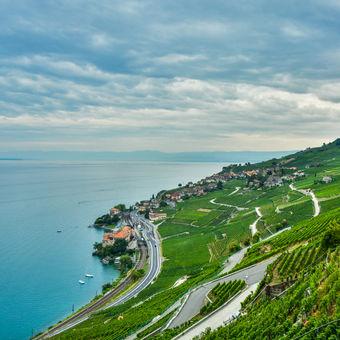 Ženevské jezero a vinice - Swiss