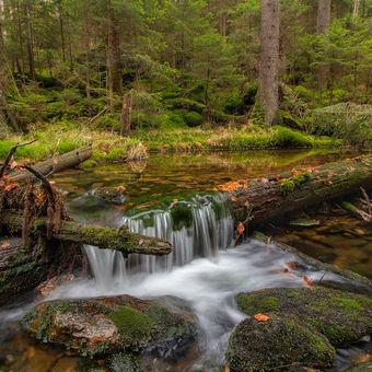Šumavská voda