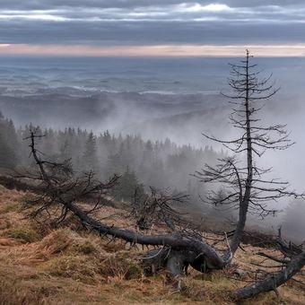 Než hory zahalí mlha.