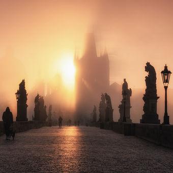 Mlžná Praha